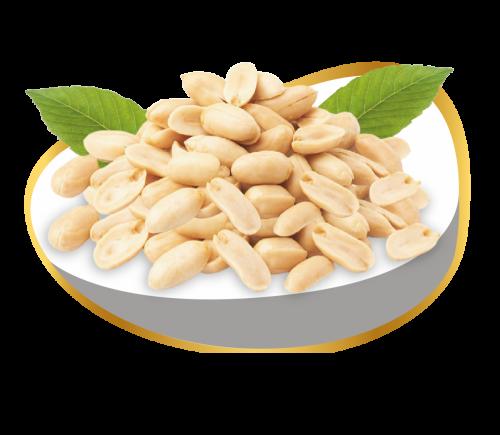roasted peanuts